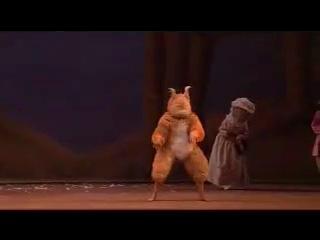 Белочка в балете